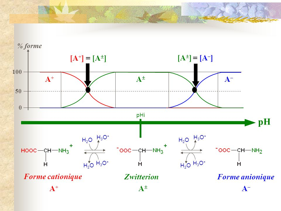 pH [A+] = [A] [A] = [A–] A+ A A– Forme cationique Zwitterion